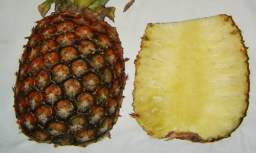 Split_ananas_cropped